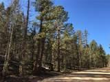 Pinecrest Road - Photo 3