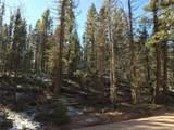 Pinecrest Road - Photo 8
