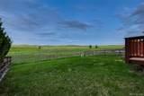 9560 Elk Mountain Circle - Photo 25