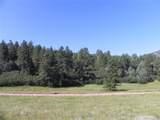 4700 Comanche Drive - Photo 10