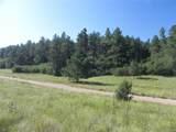 4700 Comanche Drive - Photo 8