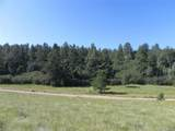4700 Comanche Drive - Photo 9