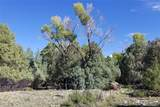 1554 Antelope Way - Photo 4