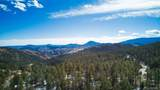 698 Impala Trail - Photo 1