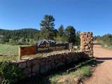 1235 Iron Mountain Drive - Photo 5