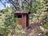 9917 Deer Creek Canyon Road - Photo 39