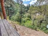 9917 Deer Creek Canyon Road - Photo 4