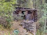 9917 Deer Creek Canyon Road - Photo 5