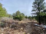 5512 Elk Ridge Trail - Photo 11