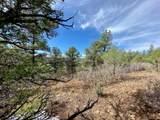 5512 Elk Ridge Trail - Photo 12