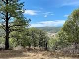 5512 Elk Ridge Trail - Photo 15
