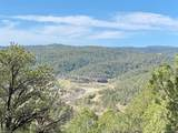 5512 Elk Ridge Trail - Photo 16