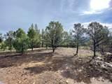 5512 Elk Ridge Trail - Photo 5