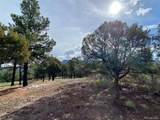 5512 Elk Ridge Trail - Photo 7