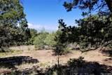 1848 Lone Pine Way - Photo 2