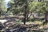 1848 Lone Pine Way - Photo 9
