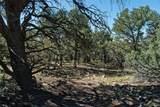 1707 & 1708 Willow Creek Way - Photo 7