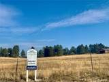 10641 Lone Fox Road - Photo 3
