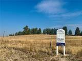 10641 Lone Fox Road - Photo 4