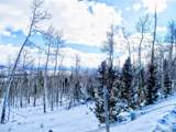 893 Lumberjack Road - Photo 19