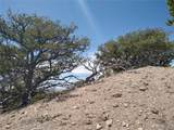 2135 Trujillo Road - Photo 13
