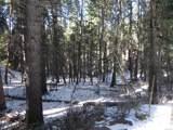 13431 Firedog Way - Photo 11