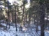 13431 Firedog Way - Photo 15