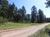 4888 Mohawk Drive - Photo 2