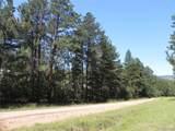 4888 Mohawk Drive - Photo 5
