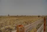 49480 Antelope Drive - Photo 36