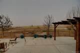 49480 Antelope Drive - Photo 38