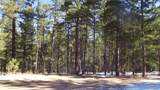 299 Pine Forest Road - Photo 1