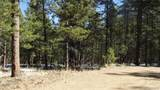 299 Pine Forest Road - Photo 3