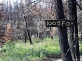 1005 Foy Place - Photo 3