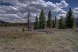 33736 Tlingit Way - Photo 13