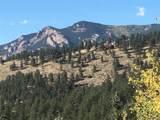 30910 Taza Trail - Photo 2