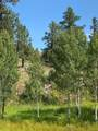 2599 Highland Meadows Drive - Photo 2