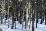 114 Elk Circle - Photo 10