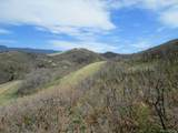 30 Raspberry Mountain Ranch - Photo 10