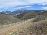 30 Raspberry Mountain Ranch - Photo 7
