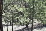 2181 Badger Creek Road - Photo 35