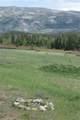 32775 Colt Trail - Photo 13