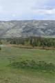 32775 Colt Trail - Photo 8