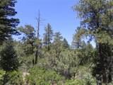 5807 Seminole Trail - Photo 18