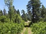 5807 Seminole Trail - Photo 20