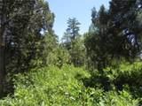 5807 Seminole Trail - Photo 22