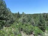 5807 Seminole Trail - Photo 4