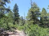 5807 Seminole Trail - Photo 8