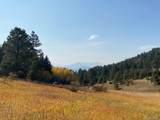 5425 Twin Spruce Drive - Photo 19