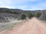 6388 Torrey Pines Drive - Photo 10